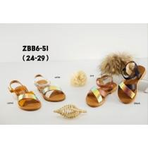 ZBB6-51