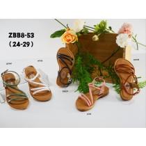 ZBB8-53